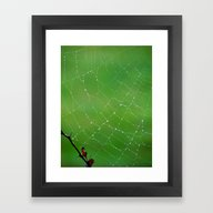 Framed Art Print featuring Web And Dewdrops by Bella Mahri-PhotoArt…