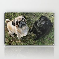 Two Cute Pugs . . .  We are Gorgeous and we Know It! Laptop & iPad Skin