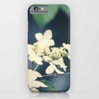 Floral iPhone 6 Slim Case