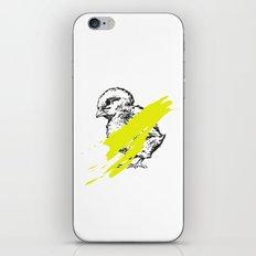untouchable iPhone & iPod Skin