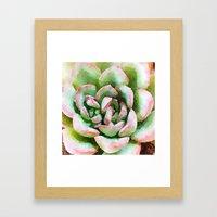 Spring Succulent Framed Art Print