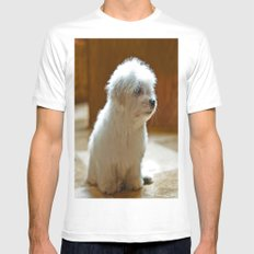 Coton de Tulear Puppy Mens Fitted Tee White SMALL