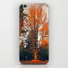 Autumn cemetery tree iPhone & iPod Skin
