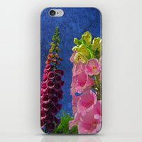 Two Foxglove flowers with textured background iPhone & iPod Skin