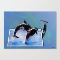 Leaping Orcas Canvas Print