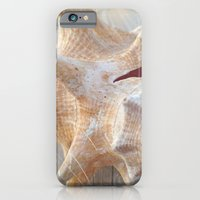 Conch iPhone 6 Slim Case