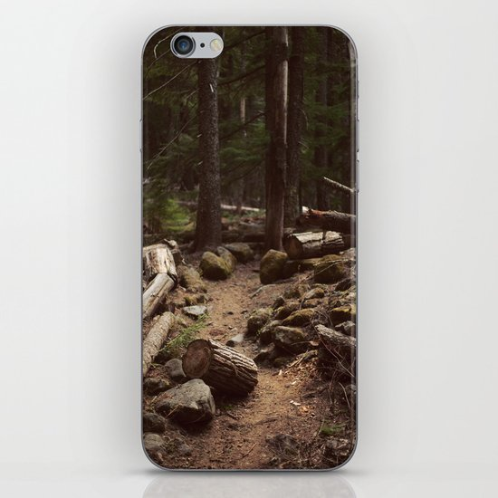 Forest Trail iPhone & iPod Skin