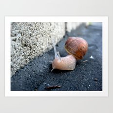 Feeling Sluggish Art Print