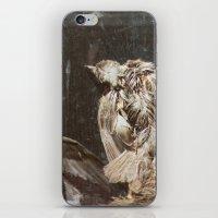 Bye Bye Birdy iPhone & iPod Skin