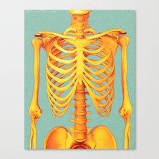 Skeleton Canvas Print