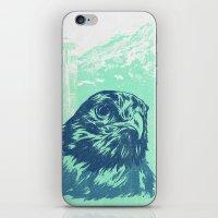 Go Hawks iPhone & iPod Skin