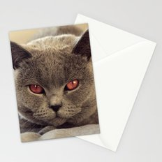 Superstar Diesel the Cat ! Stationery Cards