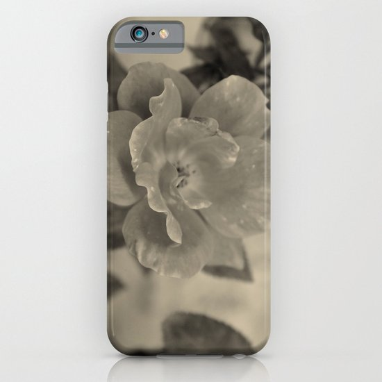 Classic Beauty iPhone & iPod Case