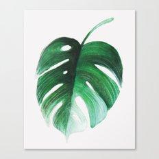 M O N S T E R A 1 Canvas Print