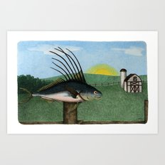 Rooster Fish Art Print