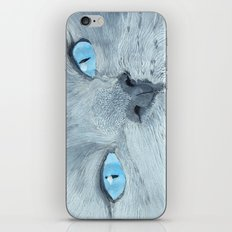 Blossom the Ragdoll Cat iPhone & iPod Skin
