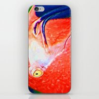 Flamingo Nose iPhone & iPod Skin