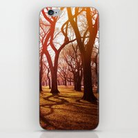 'CENTRAL PARK TANGLE' iPhone & iPod Skin