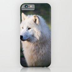 Canis Lupus Arctos II Slim Case iPhone 6s