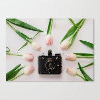Six-20 Canvas Print