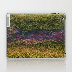 Merriweather Laptop & iPad Skin