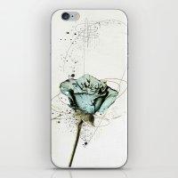 rose2 iPhone & iPod Skin
