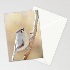 Sunlit Titmouse Stationery Cards