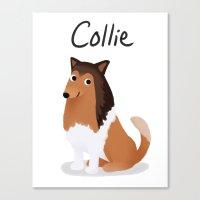 Collie - Cute Dog Series Canvas Print