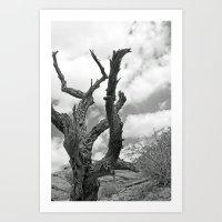 Desert Decay Art Print