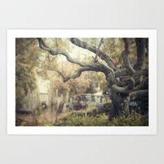 nice dream Art Print