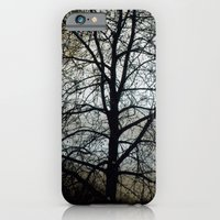 Winter Sky II iPhone 6 Slim Case