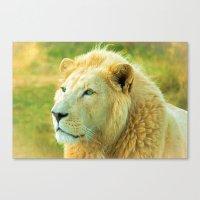 LION AROUND Canvas Print