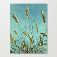 Aesthetic grass Canvas Print