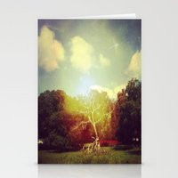 Burning Bush Stationery Cards