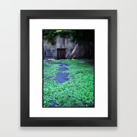 Over the Hill and through the Swamp, Color Framed Art Print