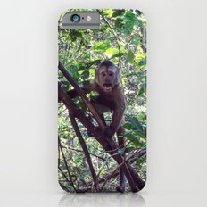 Monkey Sanctuary – Monkey with attitude iPhone 6s Slim Case