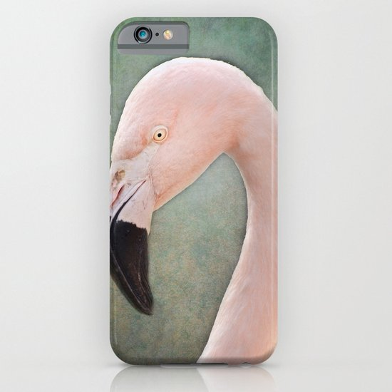 The solitary Flamingo iPhone & iPod Case