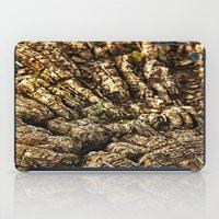 Wood 2 iPad Case