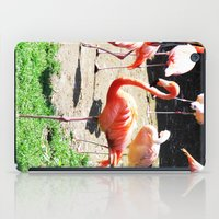 THE DANCE OF THE FLAMING… iPad Case