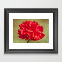 Red Carnation. Framed Art Print