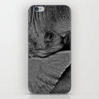 Beauty is Skin Deep iPhone & iPod Skin