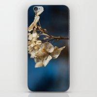 Summer's Ghost II iPhone & iPod Skin