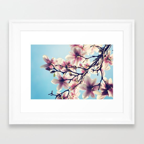 May Magnolias  Framed Art Print