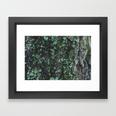 Emerald Bark Framed Art Print