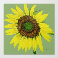 Sunflower Painted  Canvas Print