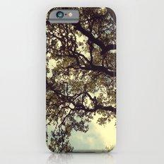 Holding on Slim Case iPhone 6s