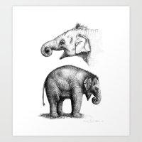Baby Elephant Study G201… Art Print