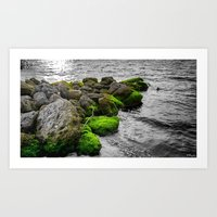 Isolated in a Monochrome Sea Art Print