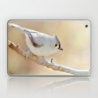 Sunlit Titmouse Laptop & iPad Skin