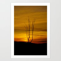 Lone Tree Sunset Art Print